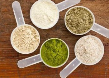 Why consume only vegan protein powder
