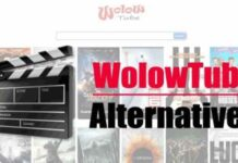 WolowTube – To Watch Online Movies For Free